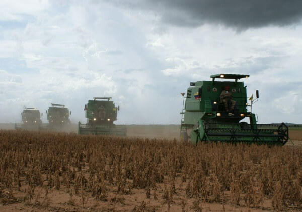 harvest-519209_1280