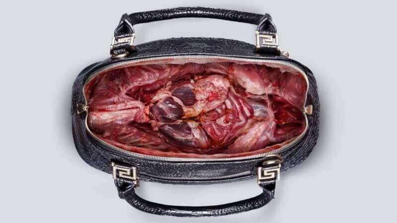 PETA-Asia-Bag-Image