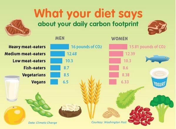 Carbon-footprint-graph