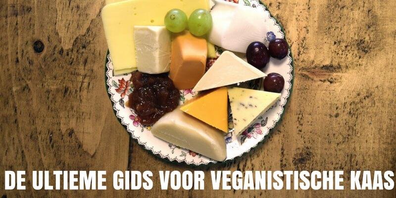 veganistische kaas nederland