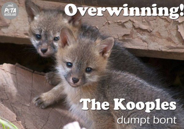 OVERWINNING: The Kooples dumpt bont!