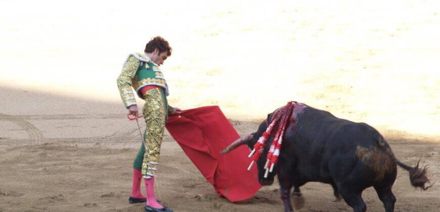 BEKIJK: Moedige activisten onderbreken stierengevecht, een ervan wordt in de ring getackeld en geschopt