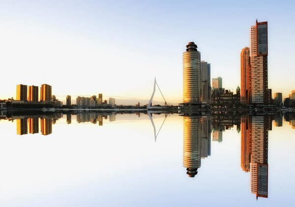 De ultieme gids voor veganistisch eten in Rotterdam