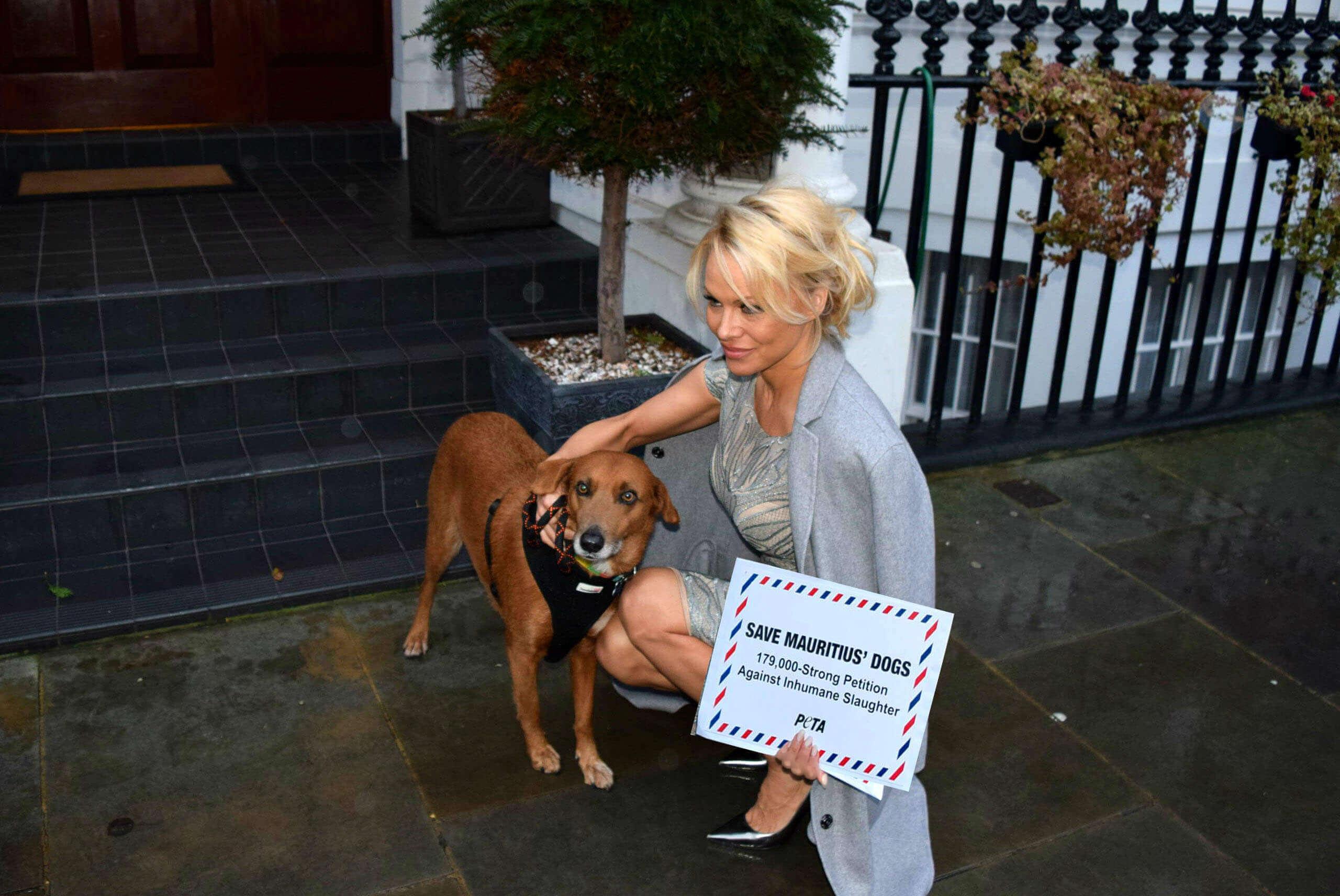 Pamela Anderson Mauritius Petitie PETA