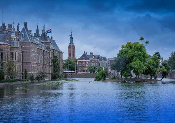 Veganistisch eten in Den Haag: Dit zijn PETA's hotspots