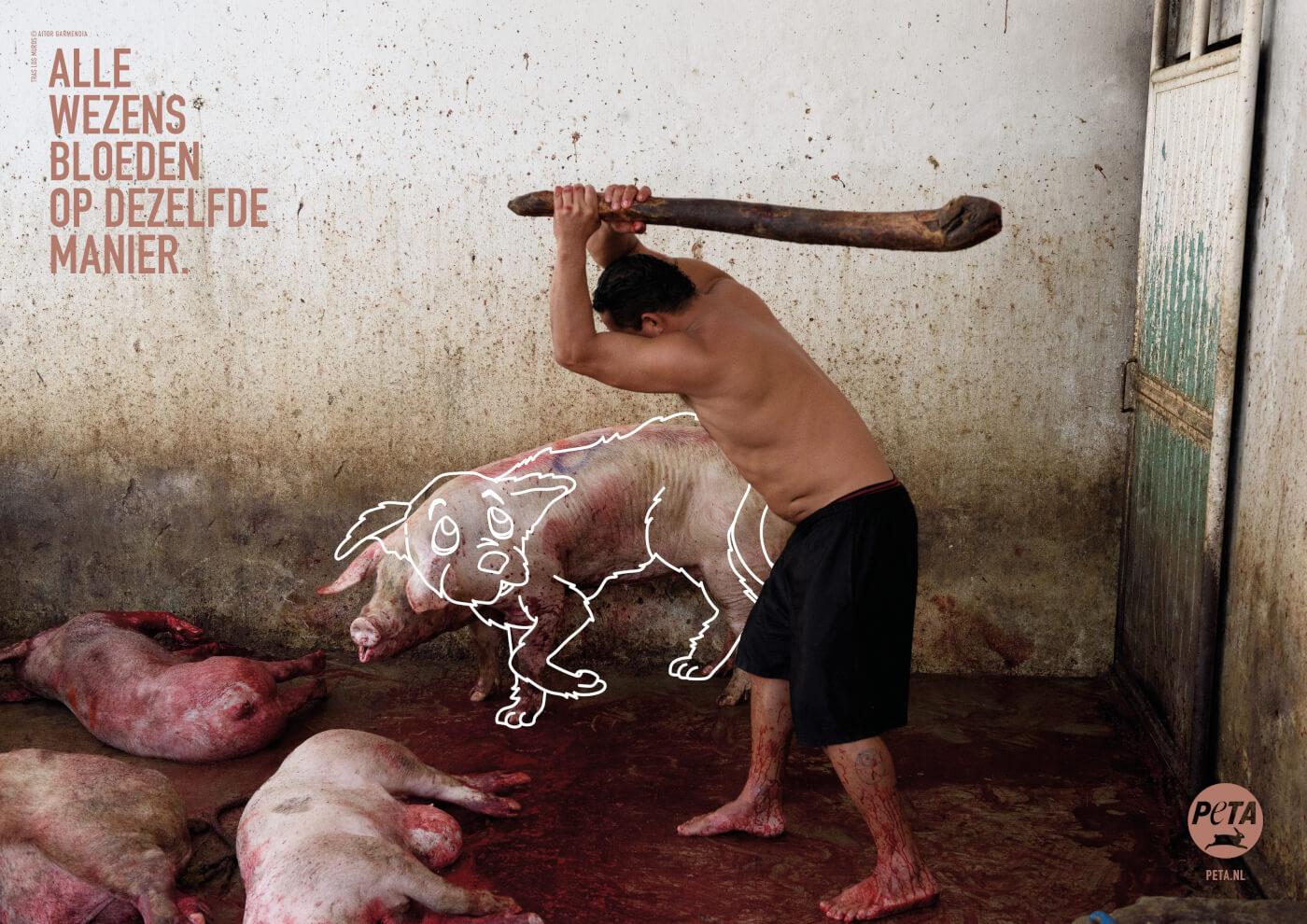 'Alle wezens bloeden op dezelfde manier': nieuwe PETA-advertenties stellen speciësisme ter discussie
