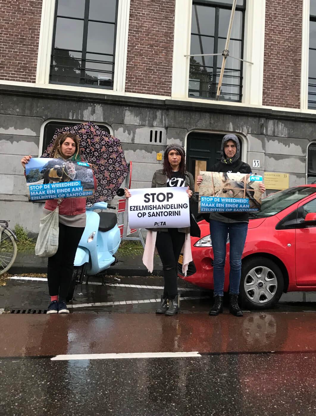 PETA-vrijwilligers demonstreren voor de Griekse ambassade in Den Haag en roepen op tot een einde aan de uitbuiting van dieren op Santorini