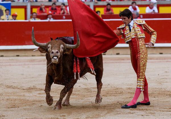 In juli worden elk jaar ten minste 48 stieren gedood in Pamplona – help dit te stoppen!