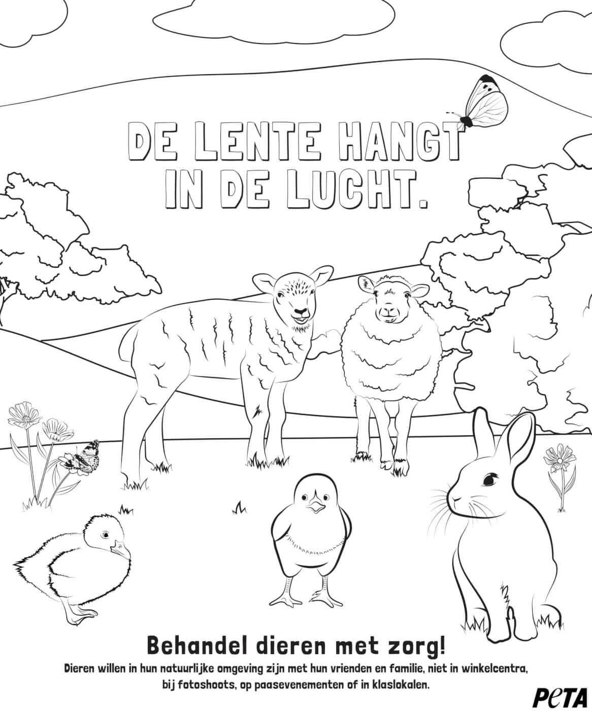 Word creatief met deze prachtige dierenrechtenkleurplaten