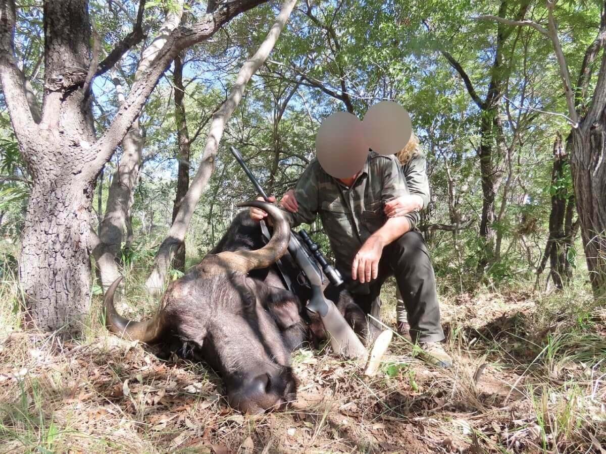 Nederlandse jager schiet buffel neer en banden Zuid-Afrikaanse president met trofeejacht blootgelegd