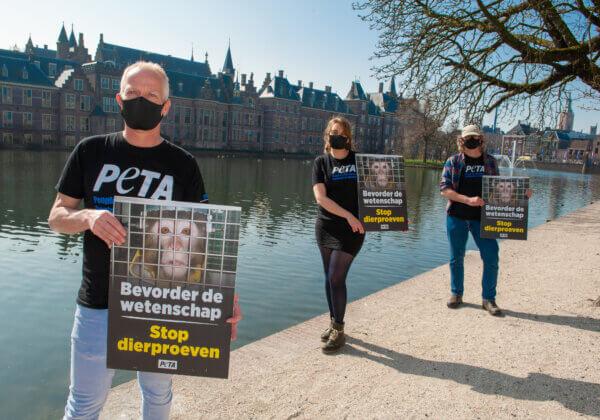 Eerste dag aan het bewind: hoe PETA het nieuwe parlement verwelkomde met een protest tegen dierproeven