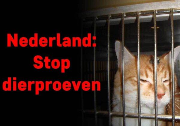 Herstel de verbroken belofte: stop dierproeven